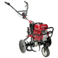 Where to rent TILLER, 5HP MID TINE in Nashville TN